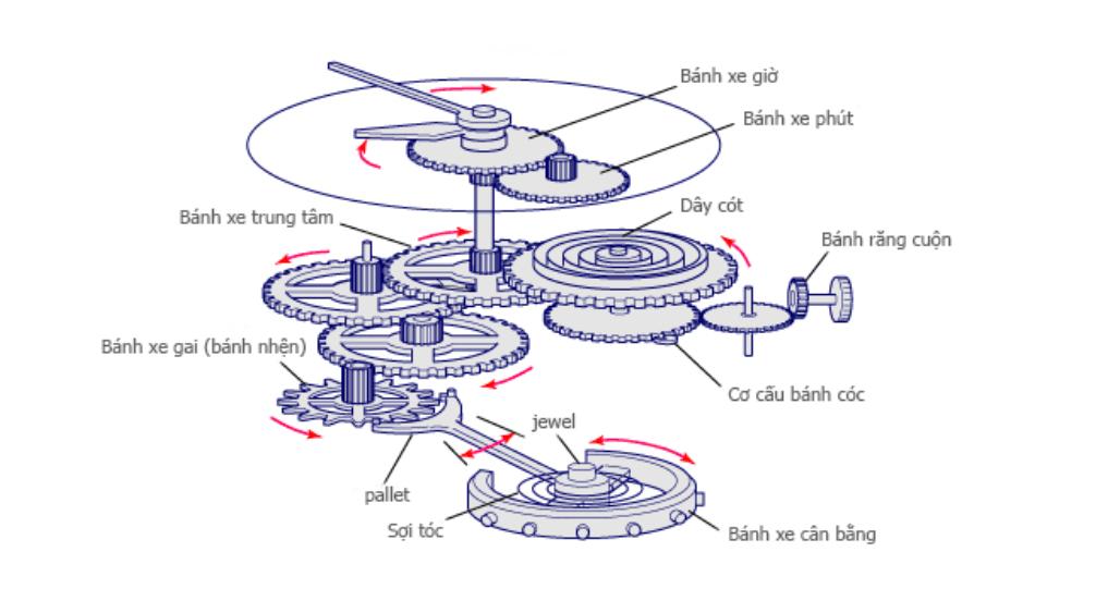 Cấu tạo cơ bản bộ máy đồng hồ cơ