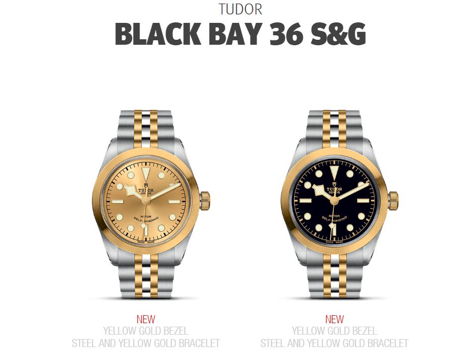 Tudor Black Bay 36 S&G M79503-0002