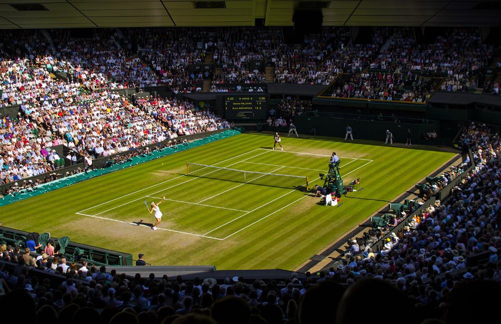 Giải đấu Tennis trên sân đất nện do Wimbledon tổ chức